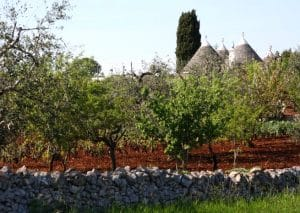 puglia-with-kids-italy-landscape