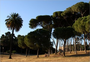 rome-with-kids-villa-doria-pamphili-park