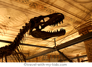 london-with-kids-family-travel-natural-history-museum
