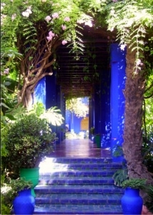 marrakesh-with-kids-majorelle-gardens
